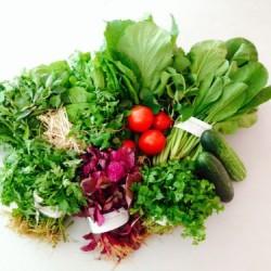 Top 10 cách nhận biến rau củ có hoá chất, thuốc trừ sâu